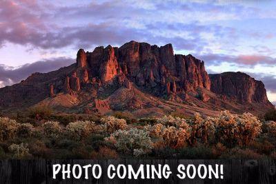 2018 Harley-Davidson Low Rider 107 Cruiser Motorcycles Apache Junction, AZ