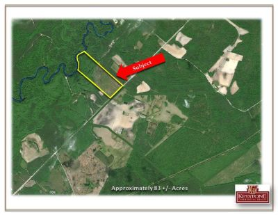 Hinson Tract-83 Acre River Tract-Nichols, SC- For Sale