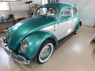 1955 VW BEETLE