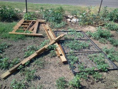 twin bed (west odessa)