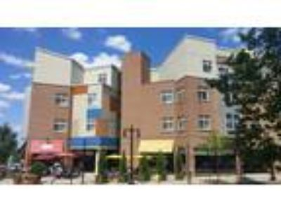 Residences at DeSales Plaza - The Dexter