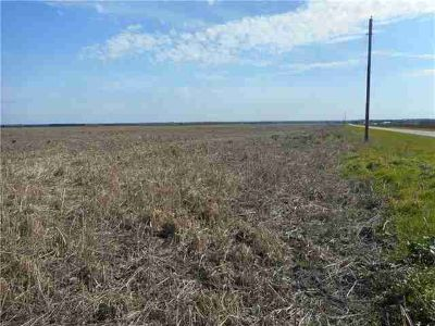 1086 County Road 3061 Thorndale, Rare Opportunity to buy