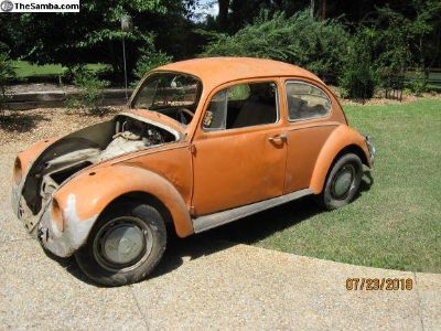 Stalled project car & parts. 1967 Beetle