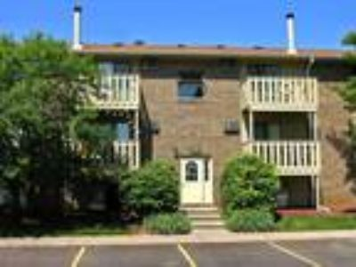 Homestead Apartments - Springbrook