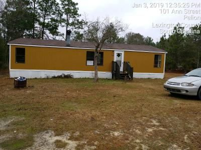 3 Bed 2 Bath Foreclosure Property in Pelion, SC 29123 - Ann St