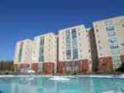 Brand New Student Housing
