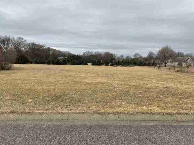 58413 Crossview Lane Lot #6 Osceola, Build your dream home