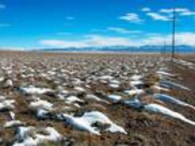 40 Acres of Colorado Land for Sale Power and Phone