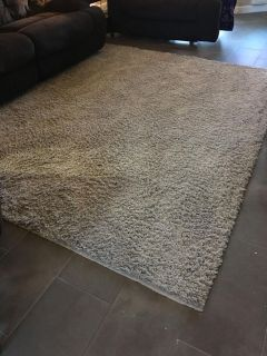 Neutral color LARGE area rug.