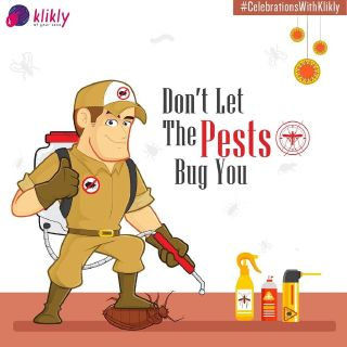 Pest Control Services in Delhi NCR at very low cost