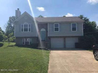 1100 Amanda Jo Dr Elizabethtown, This Four BR Two BA home