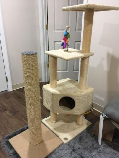 Cat Tower and Scratch Post