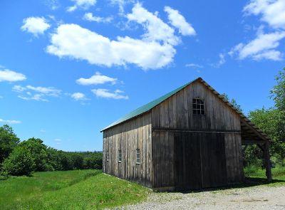 Estate/Barn Sale