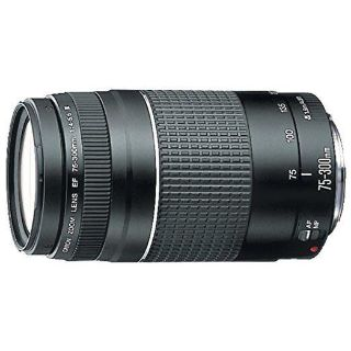 Canon EF 75-300mm Lens NEW