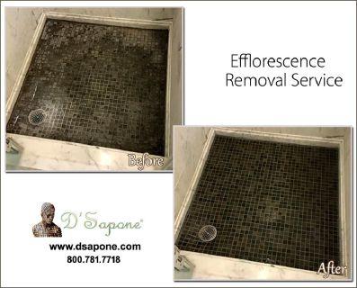 Best Shower Efflorescence Removal Service