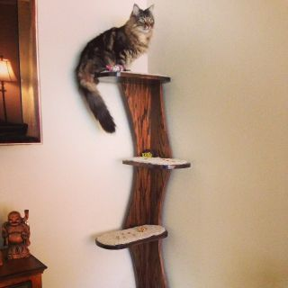 $165, Corner Climbing Cat Tower, Real Wood, 68 tall w. 5 carpeted platforms.
