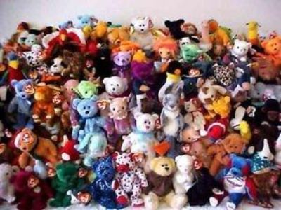 Looking for TY Beanie babies