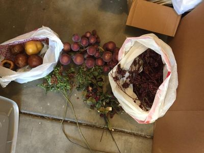 Lot of flower stems, berries and fruits etc