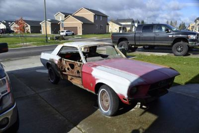 1968 Mustang Coupe ShelbyElenore project
