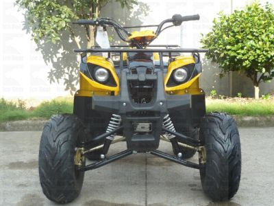 ATV (PAH125-8E) Metallic Yellow / Black