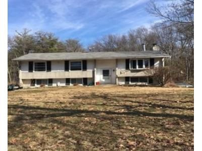3 Bed 1 Bath Foreclosure Property in Hyde Park, NY 12538 - Roosevelt Rd