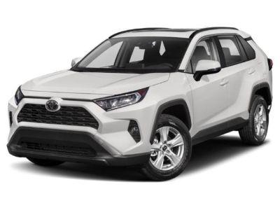 2019 Toyota RAV4 XLE (Black)