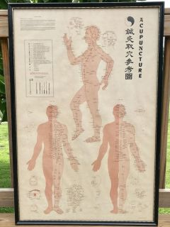 Vintage Acupuncture Poster Chart Anatomy Framed Wall Art 1973 Human Body 39 x 26