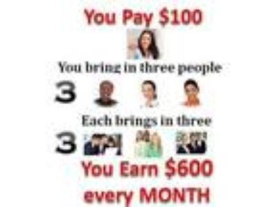 Make $600 to $10, 000 monthly
