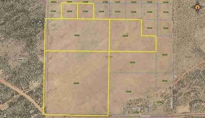 Lot 20 Jones Ranch Road Gallup, Large quiet parcel south of