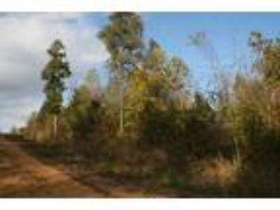Tennessee Land For Sale 5 Acres, Walk To Golf Course