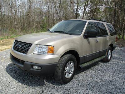 2006 Ford Expedition XLT (Gold)