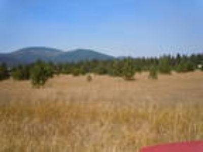 Rathdrum, South 400' of W2-SW-SE 3152N04W County parcel #