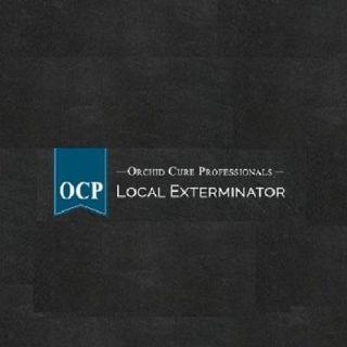 OCP Bee Removal Tucson AZ - Bee Exterminator