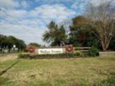 Lot/Land for Sale Suitable for Building a Home in Cul de Sac
