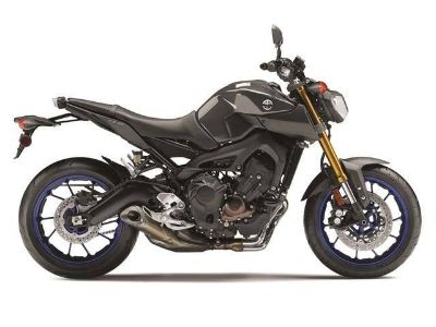 2014 Yamaha FZ-09 Sport Motorcycles Eden Prairie, MN