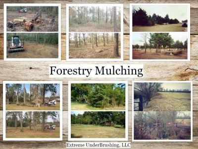 Farm & Ranch Reclamation, Brush Mulching 832-692-2298