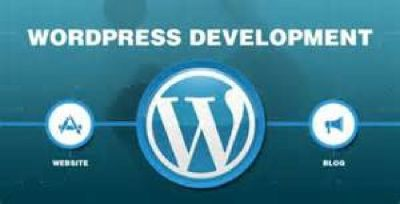 Complete Wordpress Websites Package – US $199