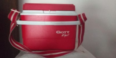 Cooler. Has bith a strap and handle. 12x 8 x7 inches. EUC