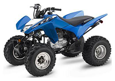 2019 Honda TRX250X Sport ATVs Herculaneum, MO