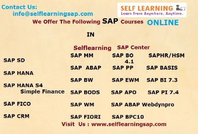SAP all Modules Available Best Price in SELF LEARNING CENTER