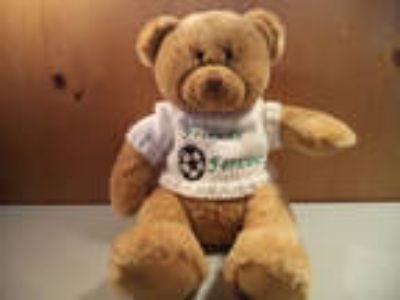 Animal Alley Friends Forever 16 inch Teddy Bear with Soccer