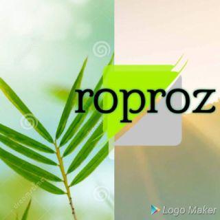 Robles lawn& pro services