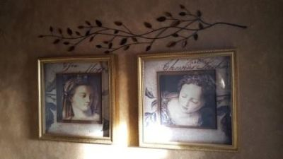 Beautiful Framed wall Picture Set