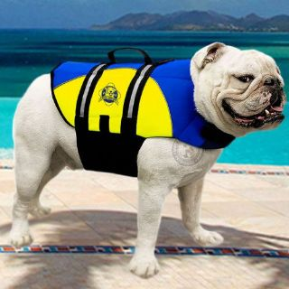Find Paws Aboard Dog Life Jacket Swim Vest NEOPRENE Blue Yellow 50-90 lb LARGE NEW! motorcycle in Philadelphia, Pennsylvania, United States, for US $43.95