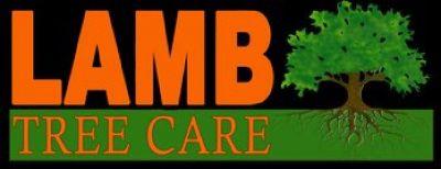 Lamb Tree Care
