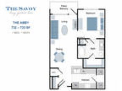 The Savoy Luxury Apartments - The Abby
