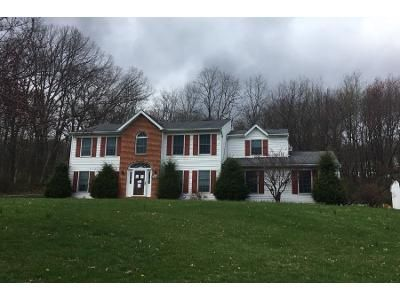 4 Bed 3 Bath Preforeclosure Property in Orwigsburg, PA 17961 - Red Dale Rd