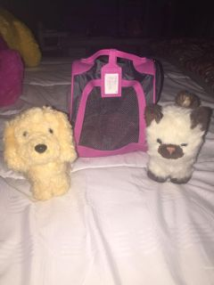 American girl cat-dog and carrier