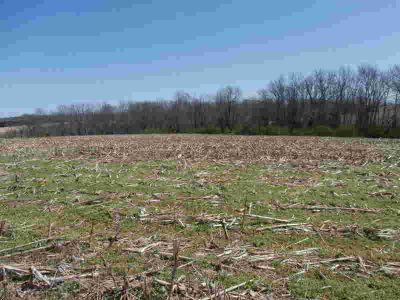 4750 Zaring Mill Shelbyville, This farm consists of 266.52