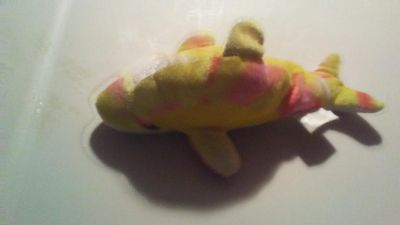 Tie dyed dolphin